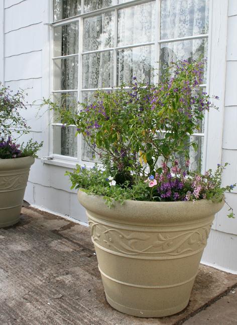 Gigantic pots of flowers