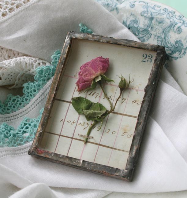Tiny rose shadowbox