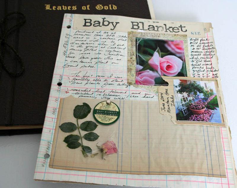 Garden journal (2)
