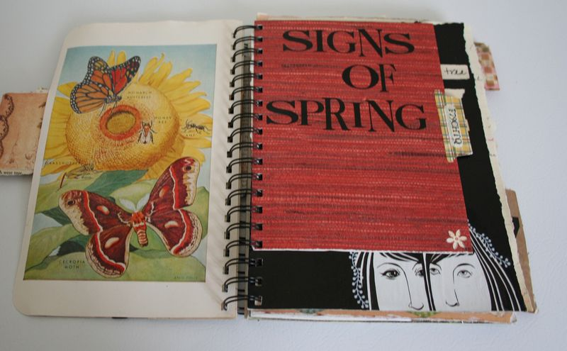 Flotsam and jetsam journal spring (2)