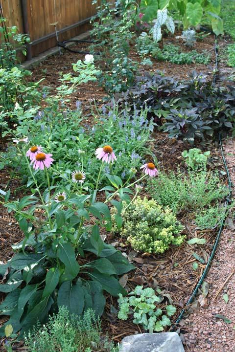 Secret garden a 007