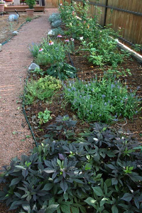 Secret garden a 010