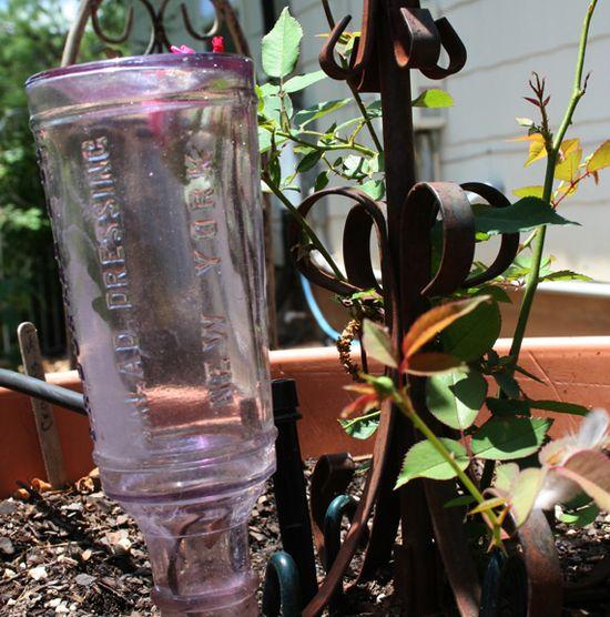 Sun glass a