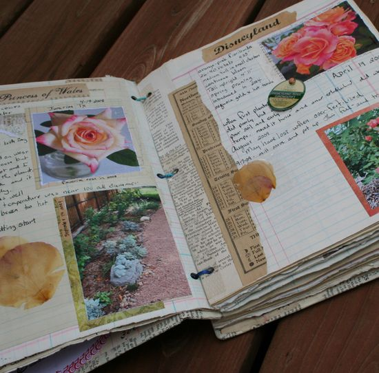 Rose journal d