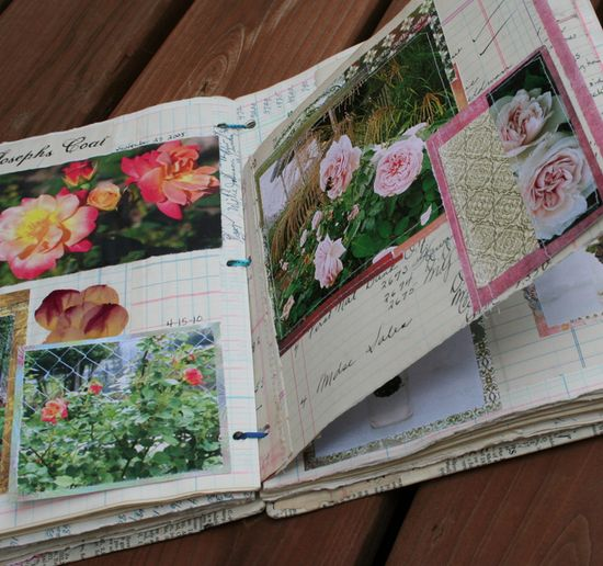 Rose journal c