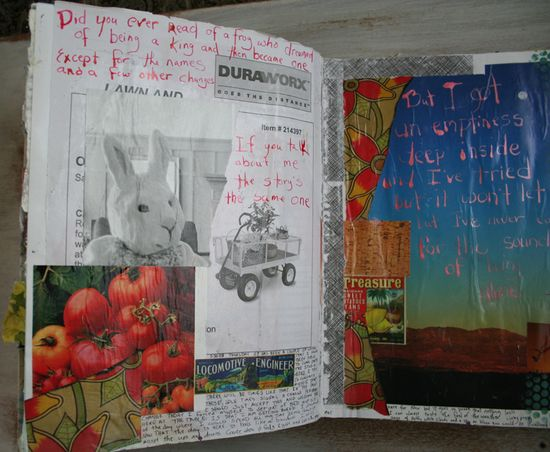 Rabbit journal