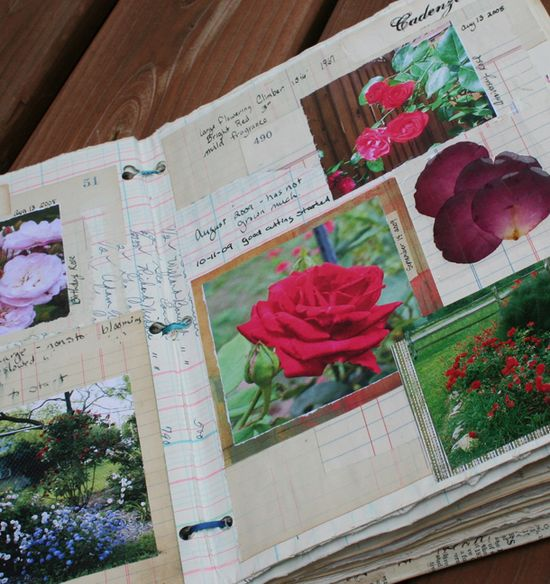Rose journal a