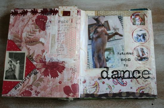 Teaching dog to dance journal