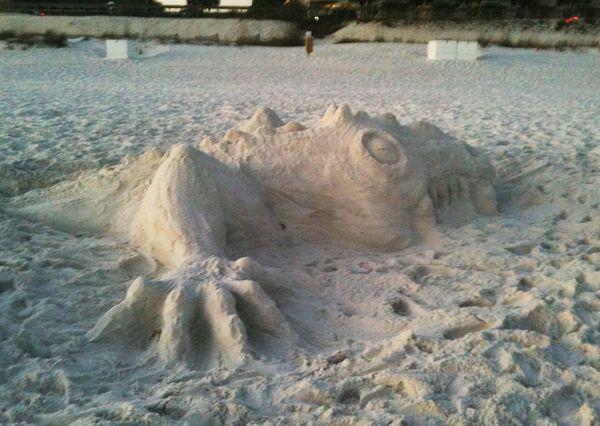3-24 sand dragon (2)