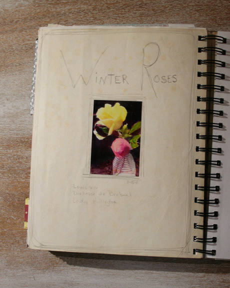 Winter roses journal page