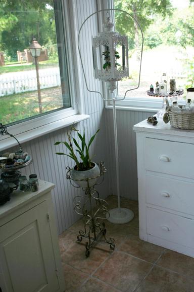 Sunroom orchid flower pot