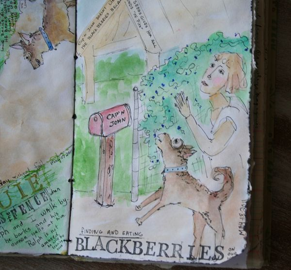 Sketchbook journal blackberries