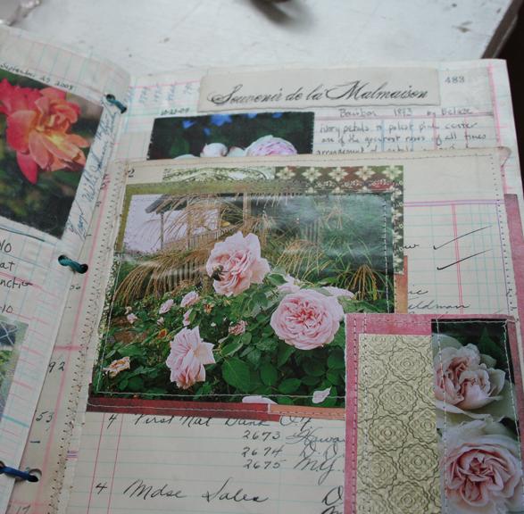 Rose garden journal notebook c