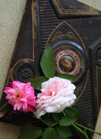 Rose and roses journal secret garden plan