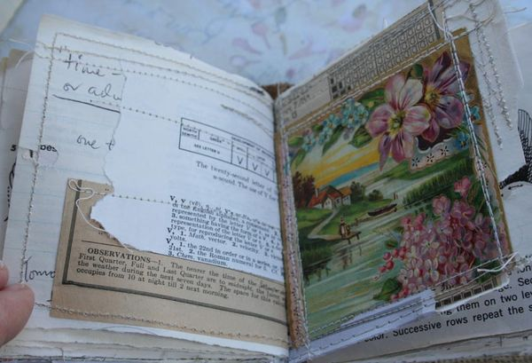 Chunky little rose book (27)
