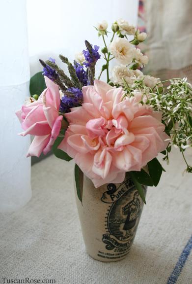 Henrietta de snoy old garden rose