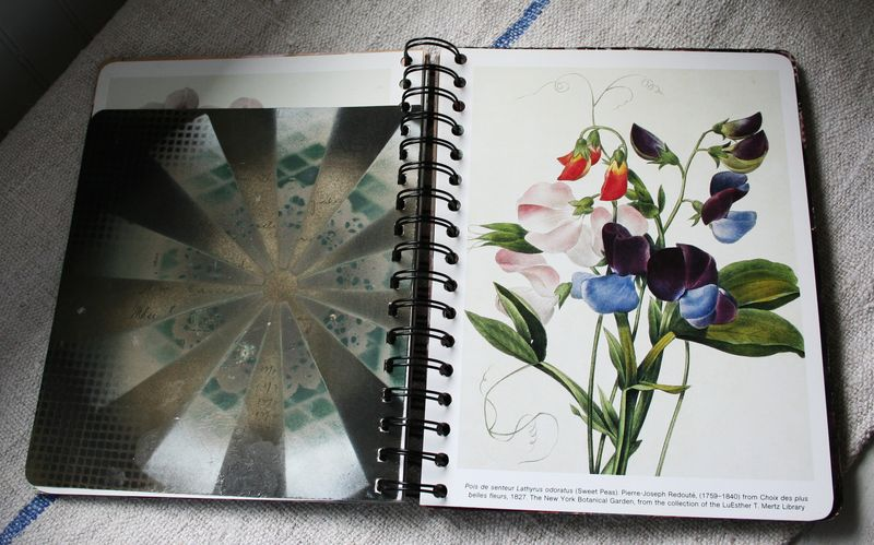 Spray paint journal d