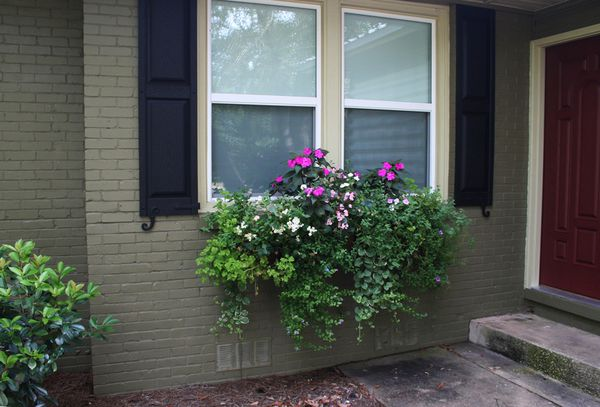 82712 window boxes a