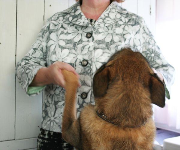 Daisy jacket and dog