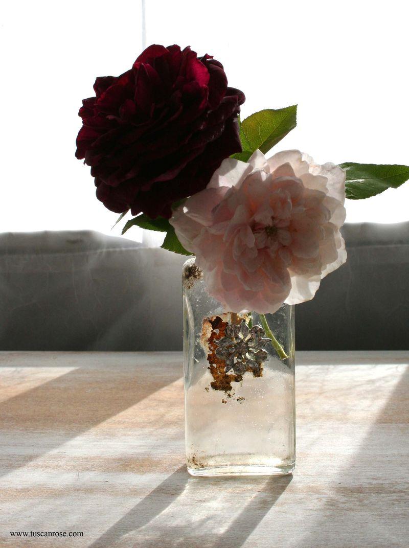 Austin roses in old bottle